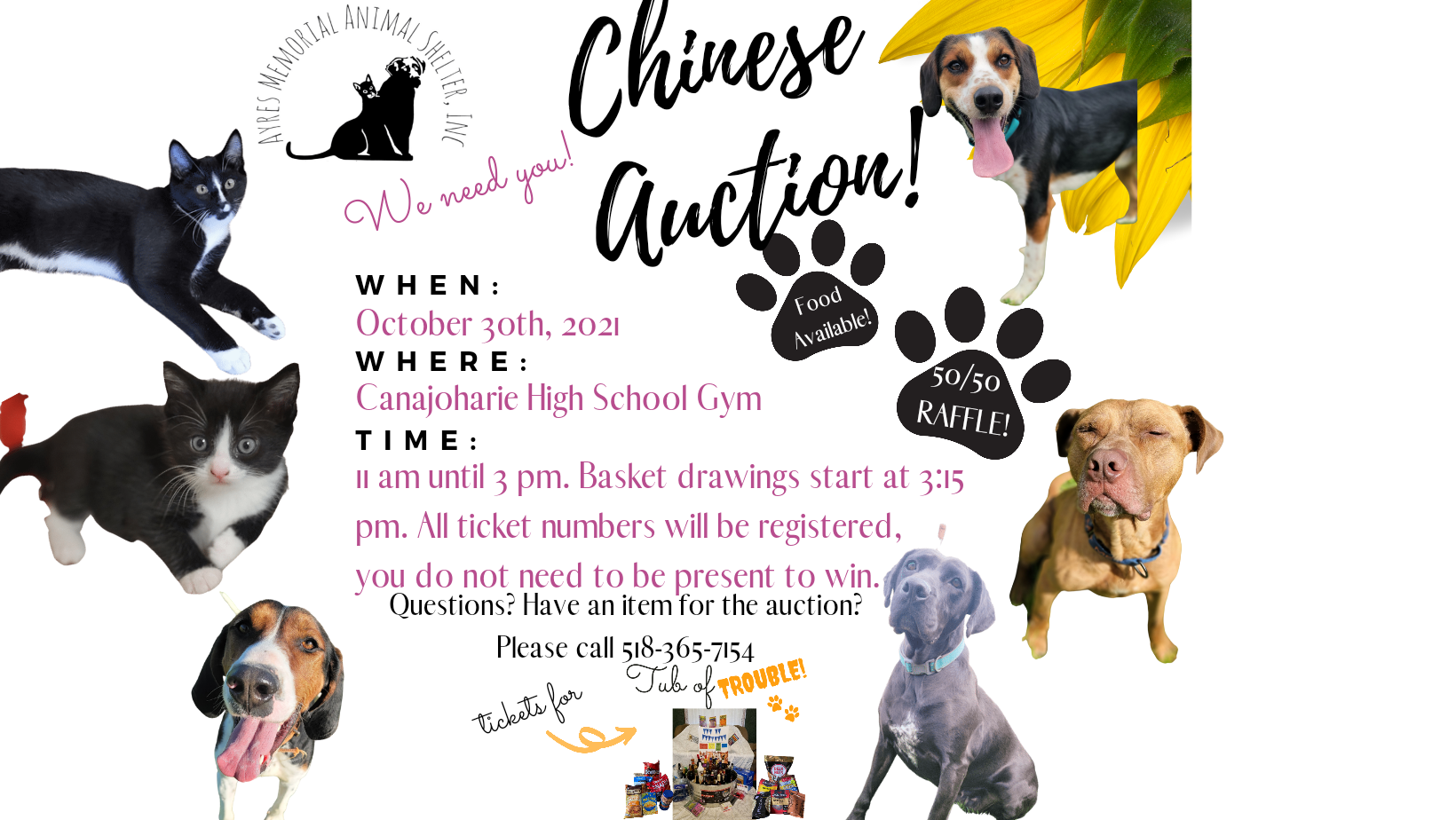 Annual Chinese Auction for Ayres Shelter @  |  |  |