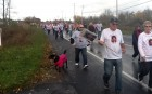 Even the dogs get into it! Making Strides Against Breast Cancer, Utica, 10-21-12